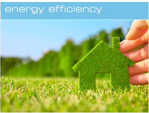 Energy Saving Advice and Services
